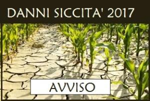 siccita_1